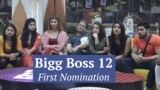Bigg Boss 12: Contestants facing the first eviction