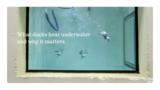 NYT ScienceTake: What ducks hear underwater