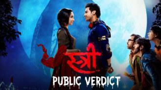 Stree: Public Verdict