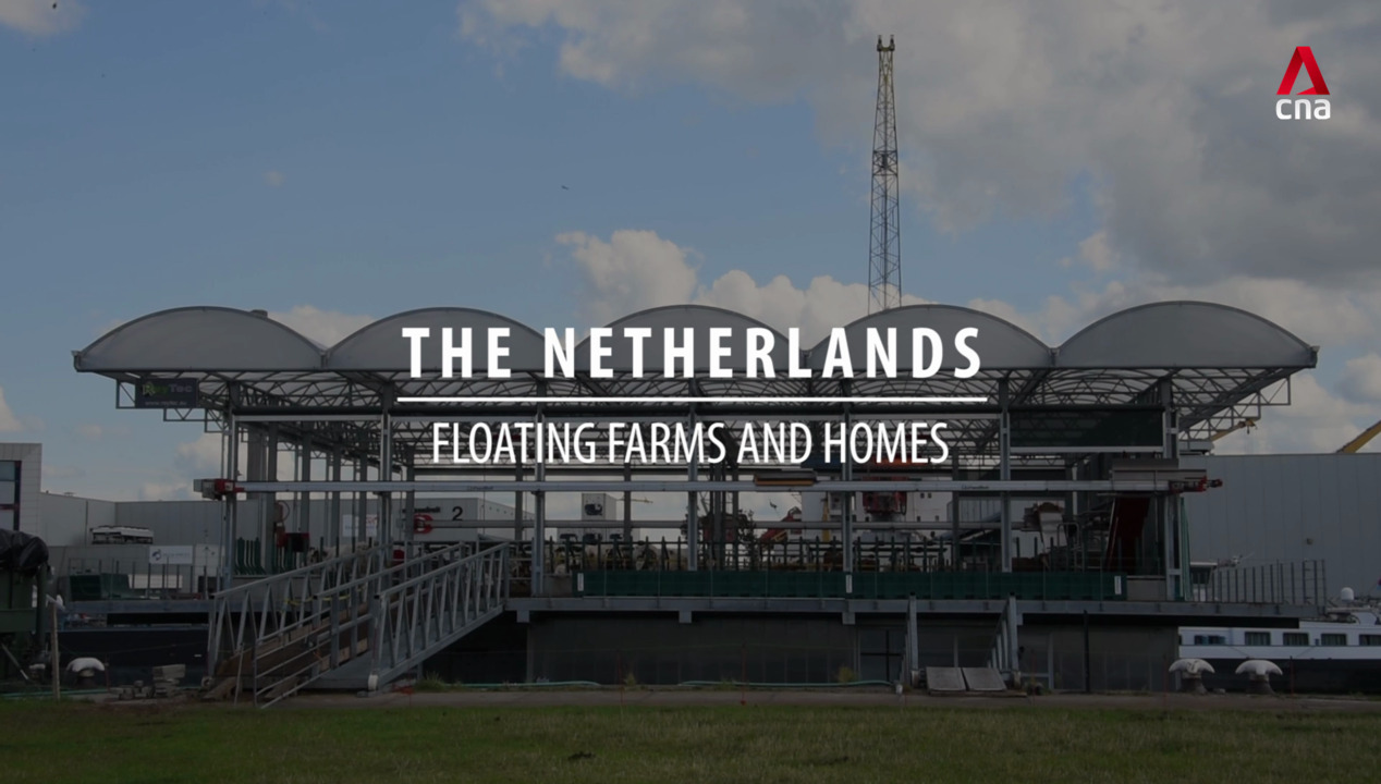 The Netherlands: Floating farms and homes | Video