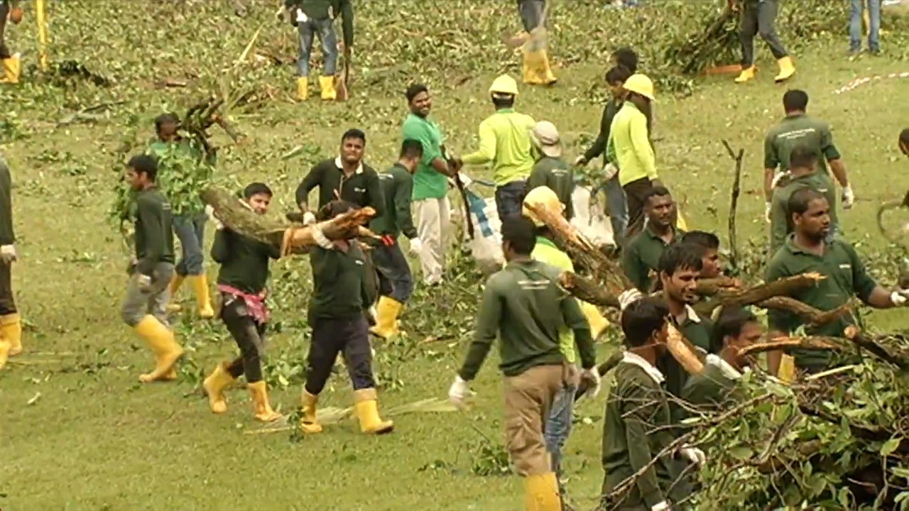 Tembusu tree accident: Death of woman a 'tragic misadventure', says coroner