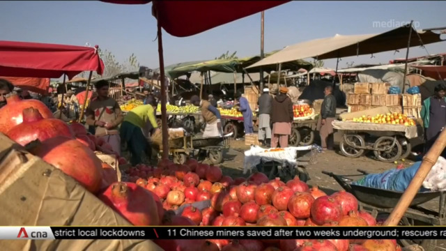 Pakistan's food crisis set to worsen amid COVID-19 pandemic | Video