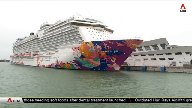 Dream Cruises ship returns to Singapore after COVID-19 case on board | Video