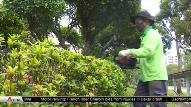 Residents to be hired for landscaping work as part of green efforts | Video